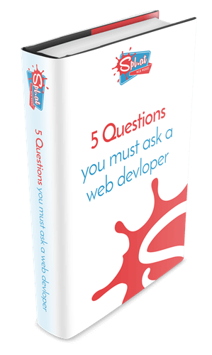 5 questions you must ask a web developer